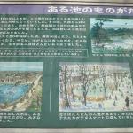 ある池のものがたり