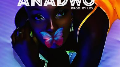Photo of Feli Nuna Entires Fans With New Song 'Anadwo'
