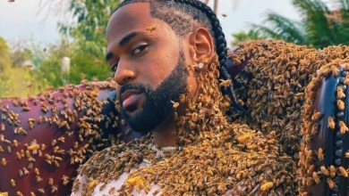 Photo of Big Sean Covered Himself In Swarm of 65,000 Bees For New Music Video