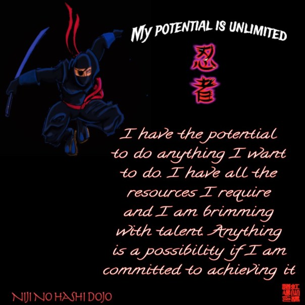 niji-no-hashi-dojo-martial-arts-cary-morrisville-raleigh-apex-durham-north-carolina-my-potential-is-unlimited