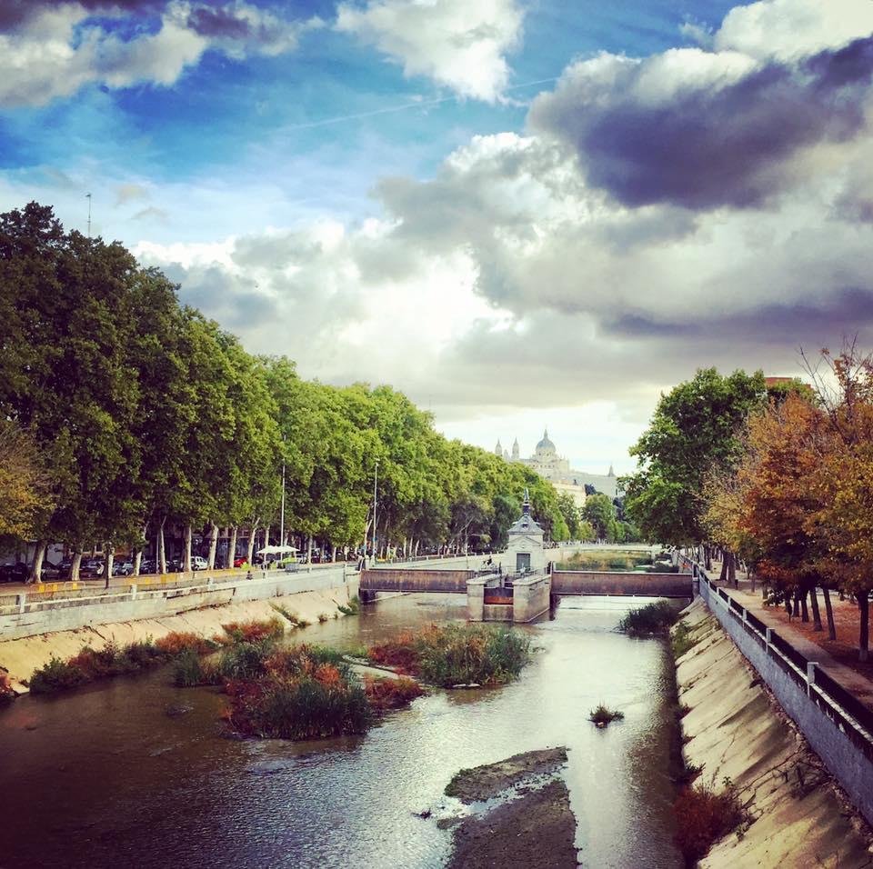 Río Manzanares desde el Puente de la Reina.