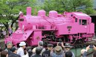 ピンク色のSLを写真に収める鉄道ファンら(30日、鳥取県若桜町)=共同