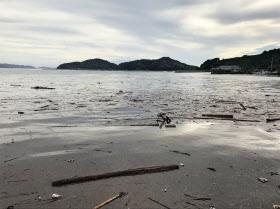 沖合に養殖施設が広がる吉田町の湾。手前には流木が目立つ(11日、愛媛県宇和島市)