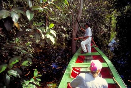 アマゾン川の水路を進むボート (Foto:Embratur)