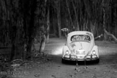 Wedding Photographer Bribie Island {Nikki Blades Photography}