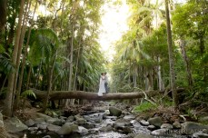Wedding Photographer Tamborine Mountain {Nikki Blades Photograph