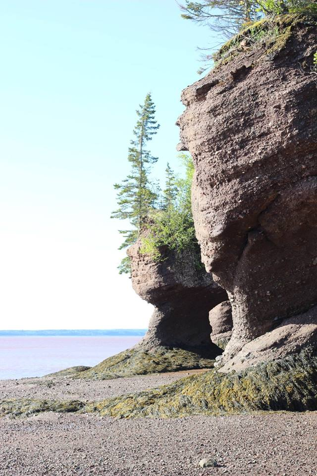 Hopewell Rocks is definitely on the list of things to do in new brunswick! It has gorgeous beaches and rock formations worth seeing.