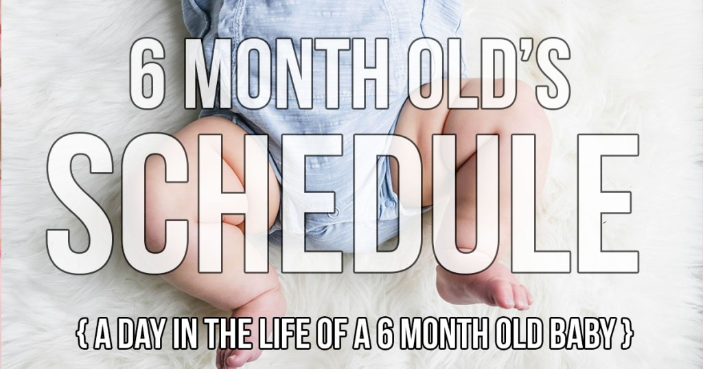 6 month old schedule 'Day In The Life With A 6 Month Old Baby' post! Our routine is pretty functional now and works well with our family!