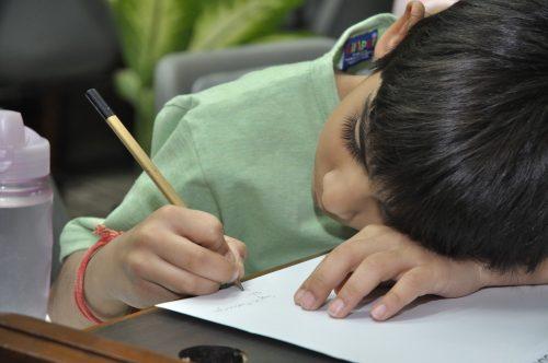 Encouraging boys to write - Nikki Young