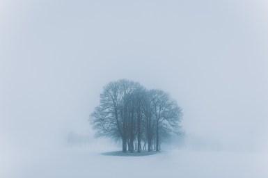Moody-Eifel-Landscape-Photogpraphy-0001