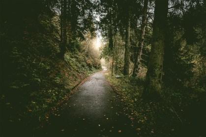 Rurtal-Adventure-Landscape-Photography-Aachen-Niklas-Coen-0001