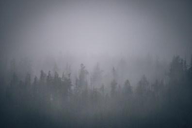 USA-Kanada-PNW-Pazifischer-Nordwesten-Landschaftsfotografie-Niklas-Coen-Fotografie-Aachen (115)