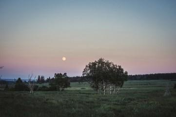 hohes-venn-baraque-michel-landschaftsfotografie