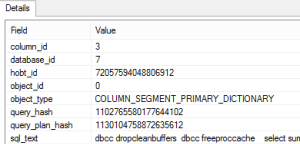 column_segment_primary_dictionary