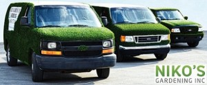 Niko's sod laying crews are at your service!