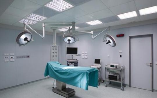 Μαριάννα Λάτση, Κέντρο ημερήσιας νοσηλείας, Νίκος Κούρκουλος
