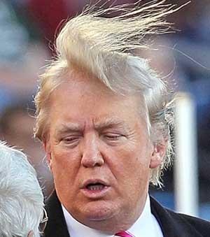 donald-trumps-hair_zpswqc4ev8g