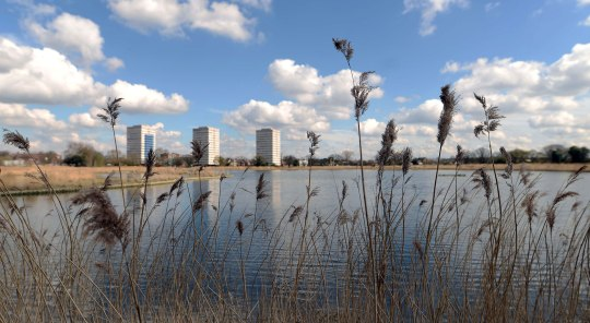 ES Homes & Property : Woodberry Wetlands