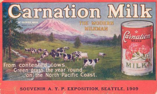 Carnation, Γάλα