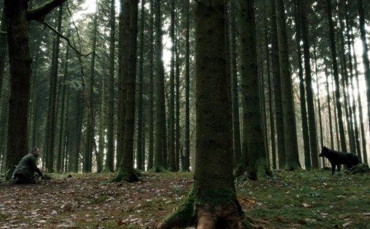 Begegnung mit dem Wolf - Urs Blank (Moritz Bleibtreu)