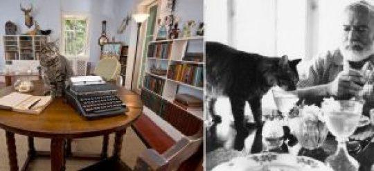 hemingway, Ernest Hemingway: The Legend, Έρνεστ Χεμινγουέϊ, συγγραφέας, δημοσιογράφος, γυναίκες, αλκοόλ, nikosonline.gr