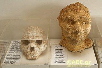 ΑΡΧΑΝΘΡΩΠΟΣ, Arxanthropos, ΤΟ BLOG ΤΟΥ ΝΙΚΟΥ ΜΟΥΡΑΤΙΔΗ, nikosonline.gr,