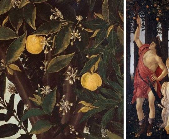 Η άνοιξη του Μποτιτσέλι, Άνοιξη, Primavera, Φλωρεντία, FLOREDIA, FLORENCE, Uffizi, Sandro Botticelli, nikosonline.gr