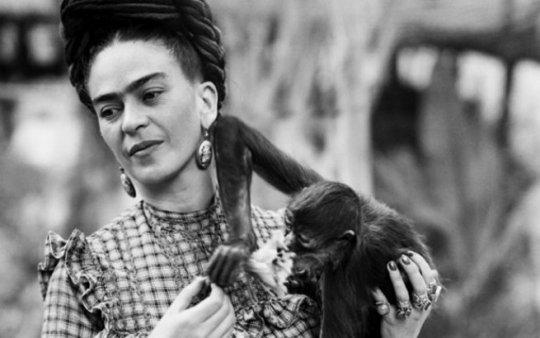 Frida Kahlo, Blue House, La Casa Azul, MEXICO, ΜΕΞΙΚΟ, ΤΟ ΜΠΛΕ ΣΠΙΤΙ, ΦΡΙΝΤΑ ΚΑΛΟ, nikosonline.gr