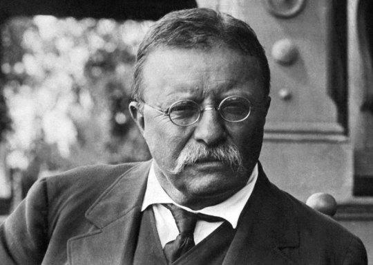 Theodore Roosevelt, Θίοντορ Ρουσβελτ, ΤΟ BLOG ΤΟΥ ΝΙΚΟΥ ΜΟΥΡΑΤΙΔΗ, nikosonline.gr