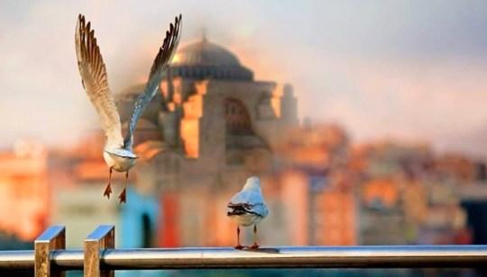 Ναός Αγίας Σοφίας, Temple- Ag. Sofia, Instanbull, ΤΟ BLOG ΤΟΥ ΝΙΚΟΥ ΜΟΥΡΑΤΙΔΗ, nikosonline.gr