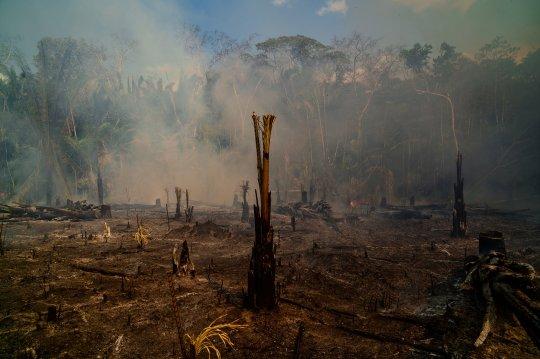 Τεράστιες πυρκαγιές στον Αμαζόνιο / Βραζιλία