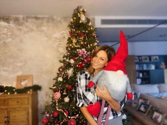 Χριστούγεννα στο σαλόνι, ΕΛΛΗΝΕΣ ΣΕΛΕΜΠΡΙΤΙΣ, ΧΡΙΣΤΟΥΓΕΝΝΙΑΤΙΚΑ ΔΕΝΤΡΑ, SPITI, CHRISTMAS AT HOME, GREEK CELEBRITIES, nikosonline.gr