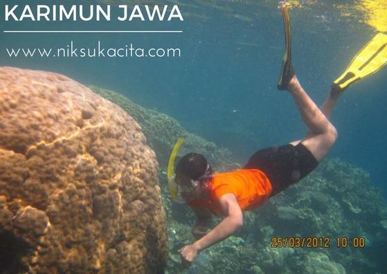Bawah lautnya Karimun Jawa - Indonesia