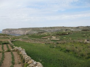 grünes Gozo