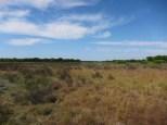 und noch mehr Landschaft