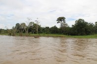 weiter den Amazonas hinaus
