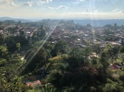 Blick von La Cruz auf Salento