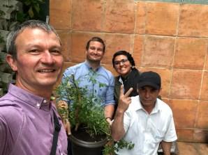 Baum pflanzen im BioHotel