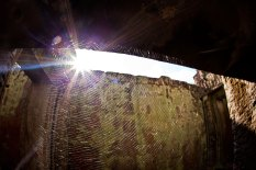 Spiderweb - Ankor Wat, Cambodia