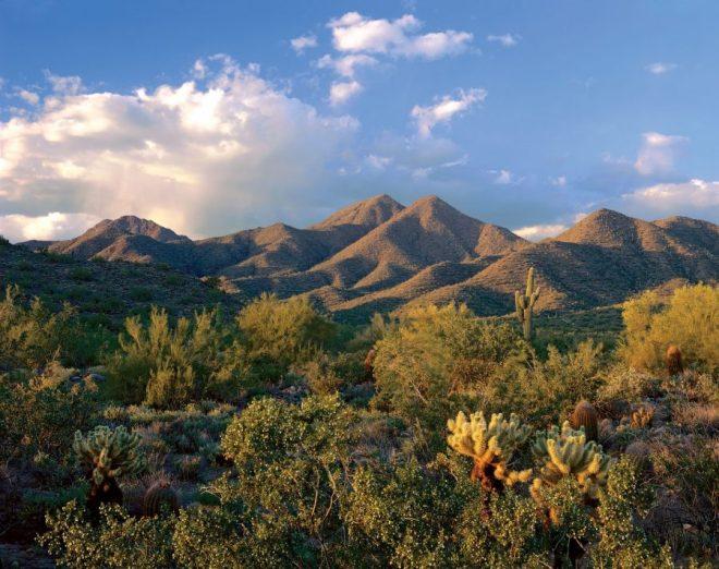 Photo courtesy of Scottsdale Convention & Visitors Bureau
