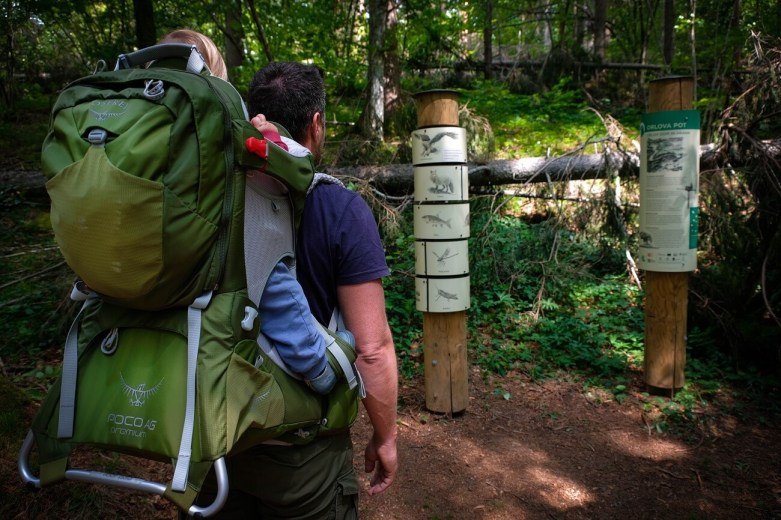 Child Carrier Osprey Poco Ag Review Nina Travels