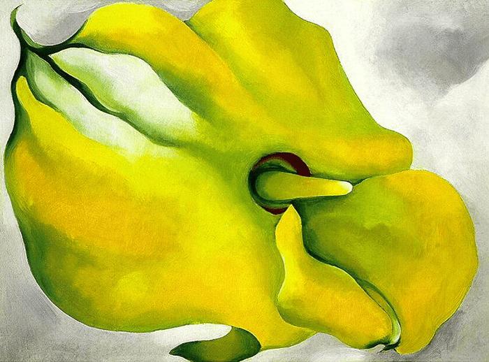 Georgia O'Keeffe flor amarilla