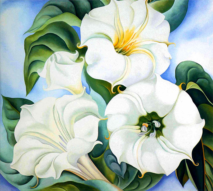 Georgia O'Keeffe white flowers