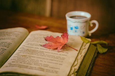 Un libro abierto, una taza de té y el otoño... ¿Puede haber algún momento más mágico?