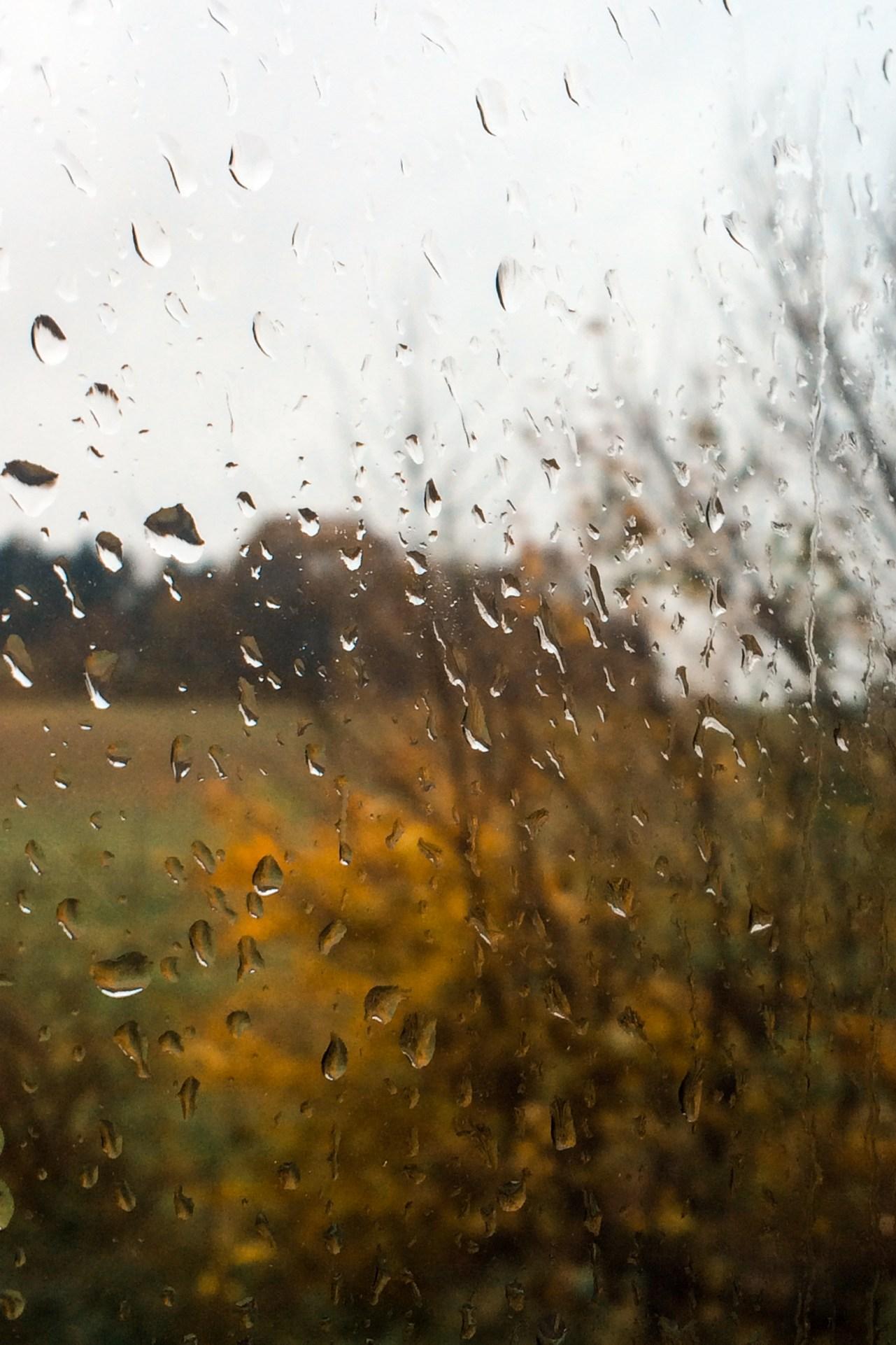 Fotografi af Nina Marquardsen - efterårs regn