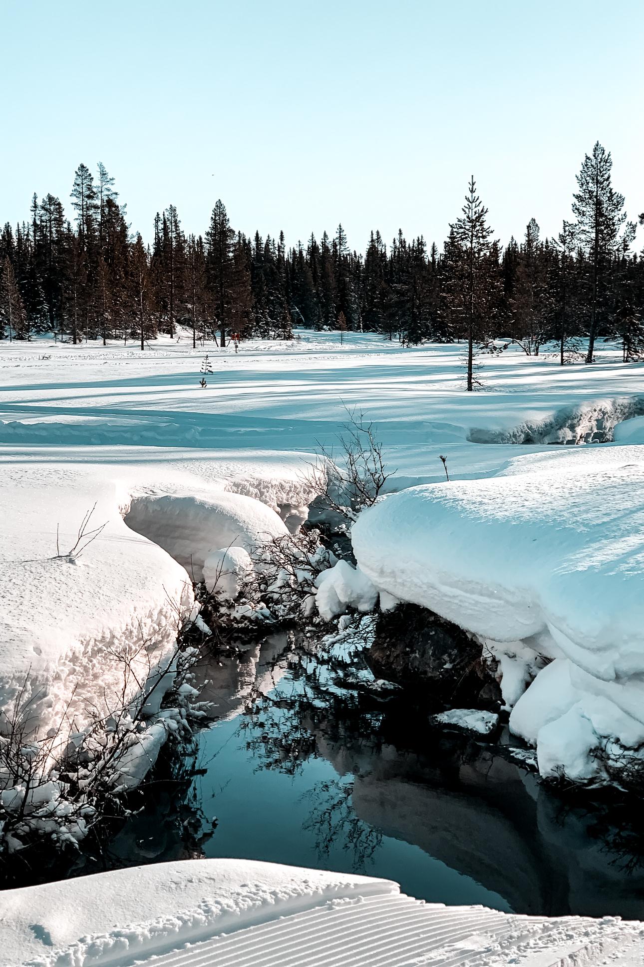 Nina Marquardsen Sågbäcken Sne og sol