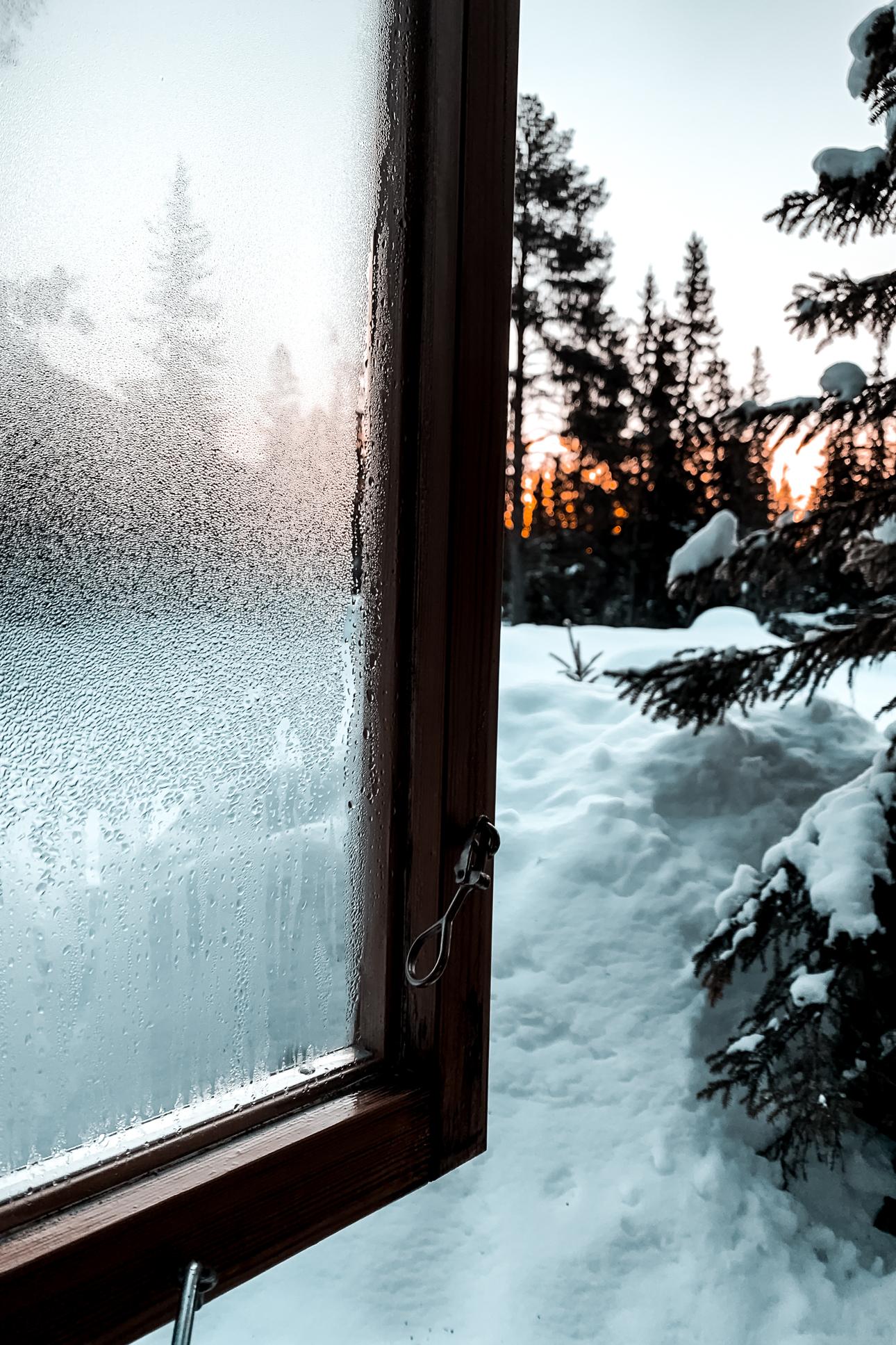 Nina Marquardsen Sågbäcken - sne og sol i morgenlys