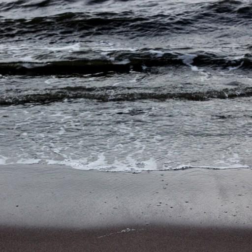 mørkt vand ved hornbæk strand