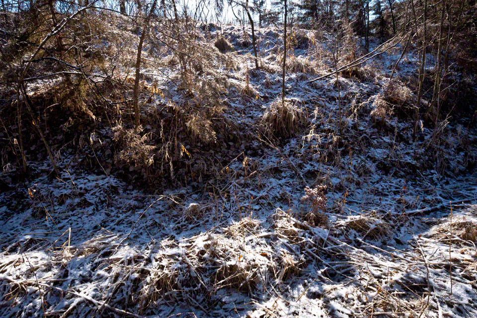 Early Morning Light Spills into the Draw Light Snow Dusting - Grass CU