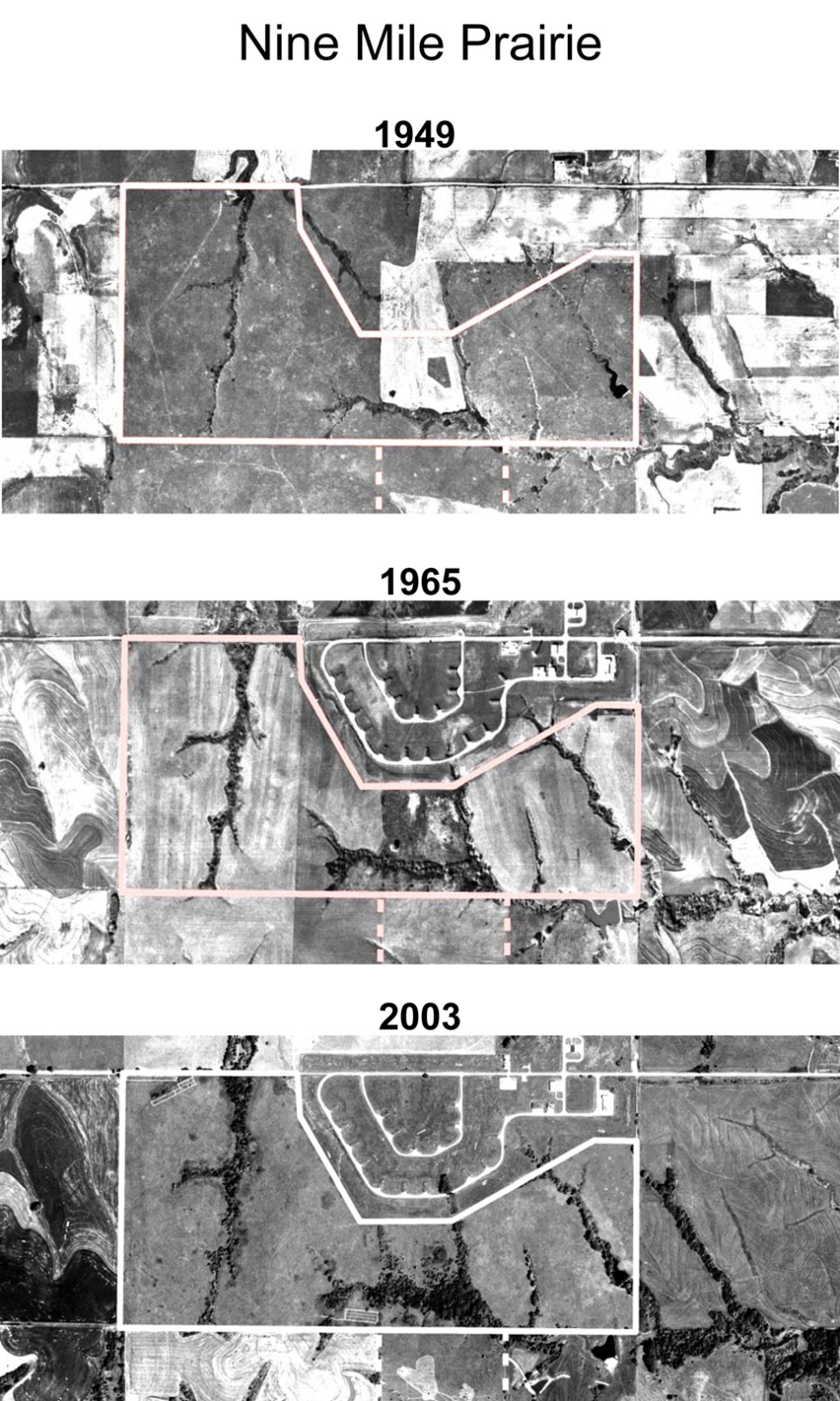 Three historic aerials provided by Dr. David Wedin, School of Natural Resources at UN-L.